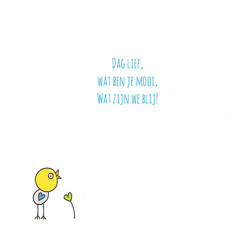 Geboortekaartje vogel blauw hart 2