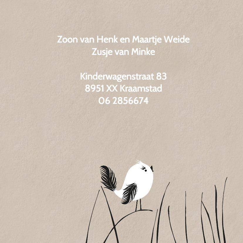 Geboortekaartje Vogel in de wei 2