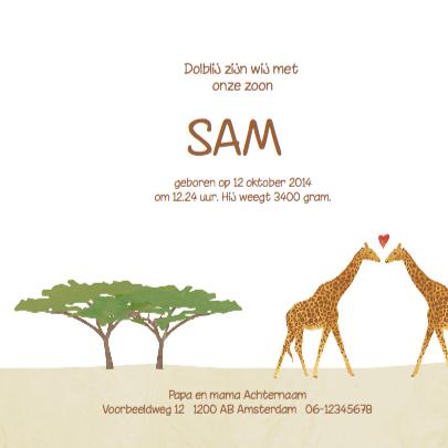 Geboortekaartje vrolijke giraf  3