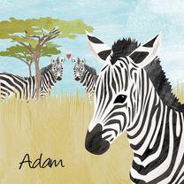Geboortekaartjes - Geboortekaartje zebra Afrika