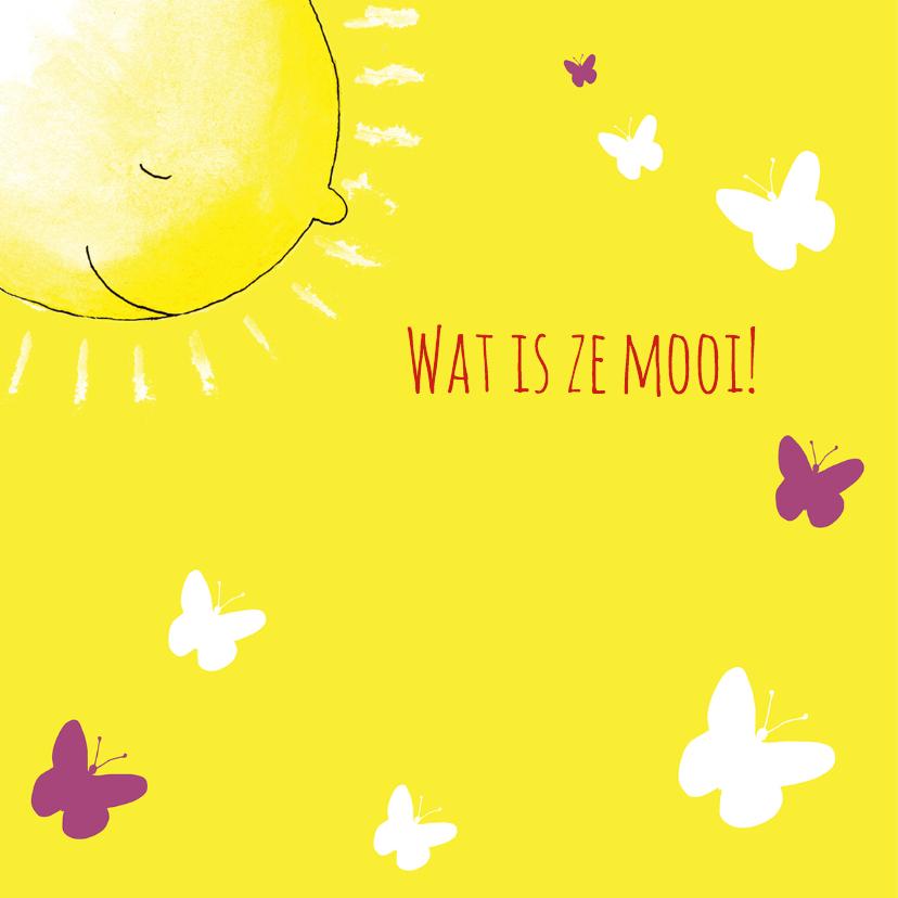 Geboortekaartje zon kat vlinder 2