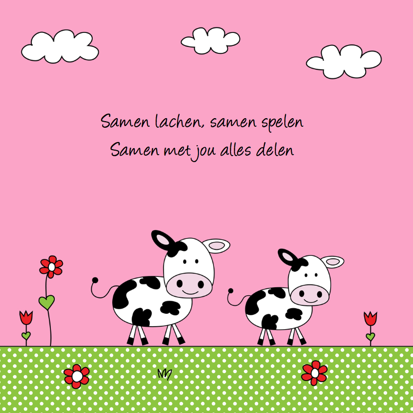 Geboortekaartje zusje koeien weiland 2
