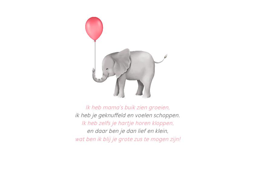 Geboortekaartje zusje lief met olifantjes 2