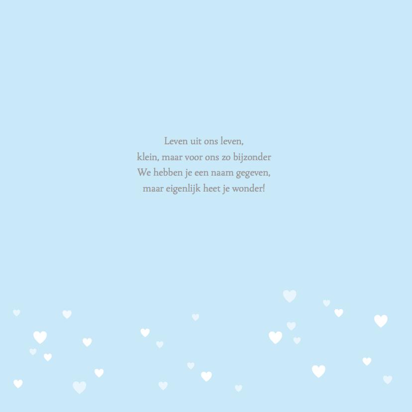 Geboortekaartje zwaantje lichtblauw hartjes 2