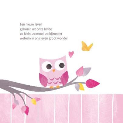 Geboortje meisje uiltje roze 2