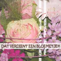 Jubileumkaarten - Gefeliciteerd bloemetje verdient