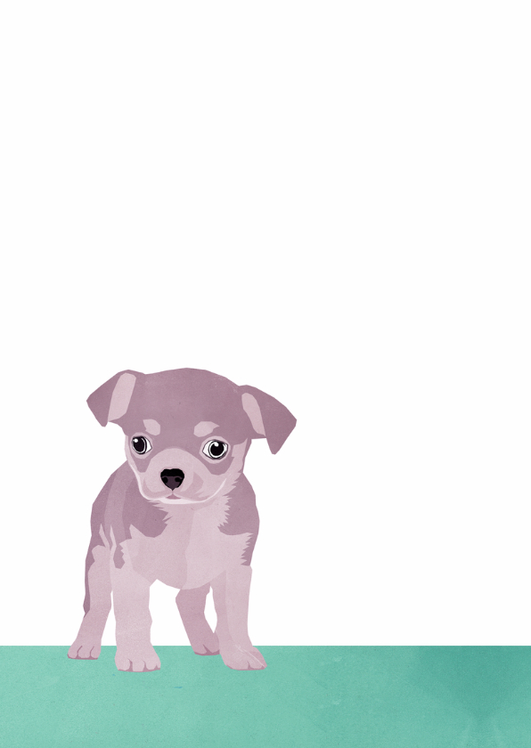 Gefeliciteerd - met puppy 2