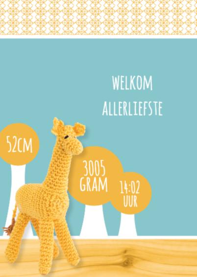 Gehaakt geboortekaartje Giraffe! 2