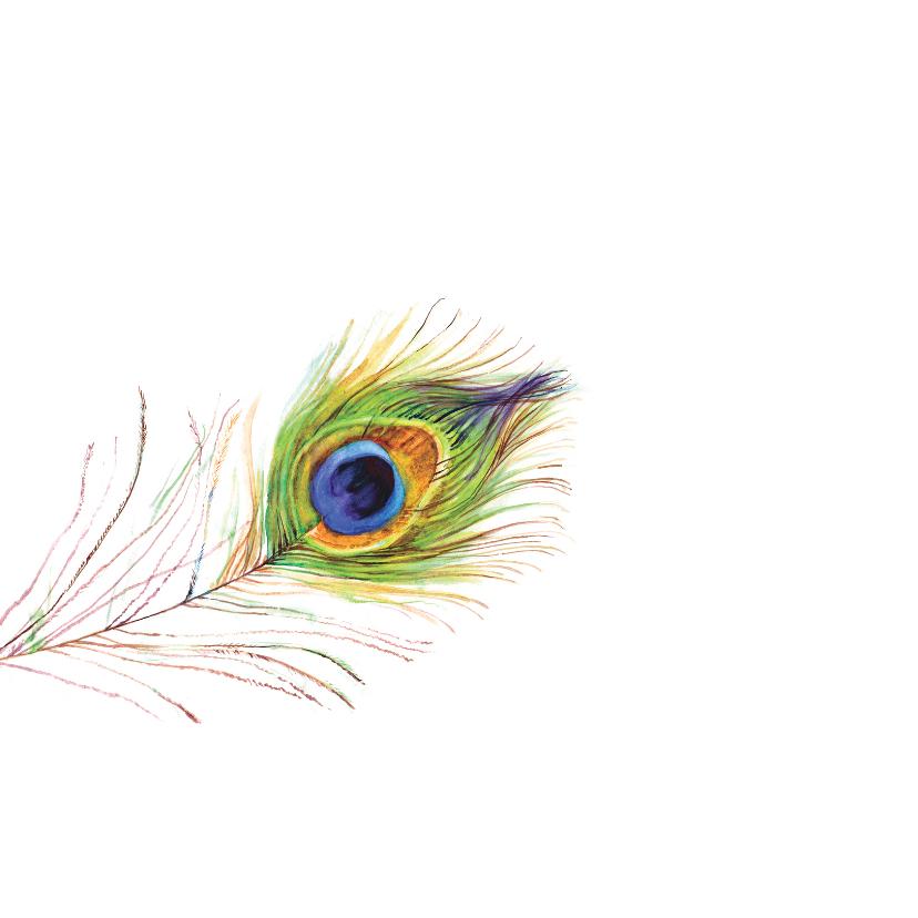 Geslaagd! mooie kaart met pauw veren 2