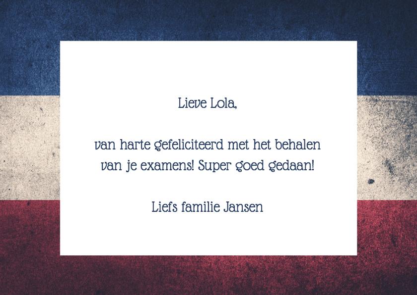 GESLAAGD Nederlandse vlag - DH 3