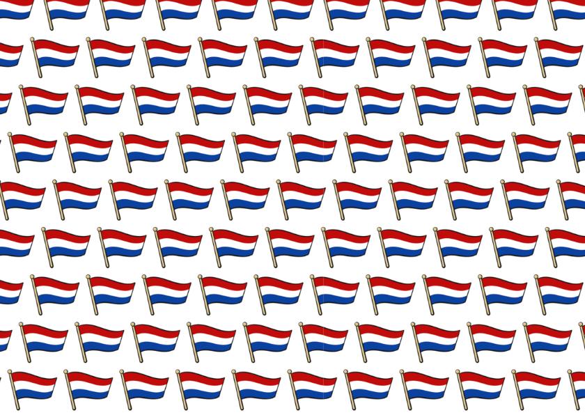 Geslaagd - vlag met ruimte voor naam  2