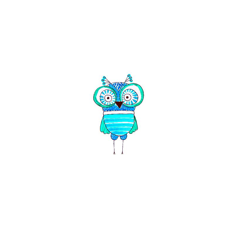 Geslaagdkaart uiltje blauw  2