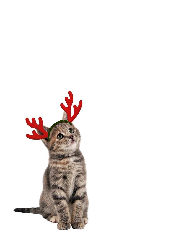 Giraf met kerstmuts-isf 2