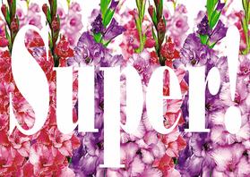Felicitatiekaarten - Gladiolen met super - AW
