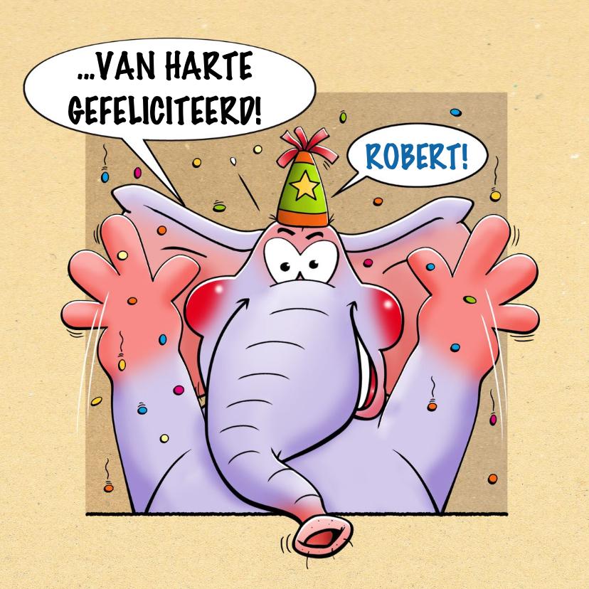 Grappige verjaardagskaart met olifanten in 4 ramen 3