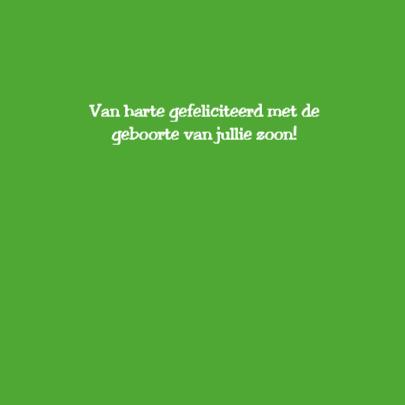 Groen draakje 3