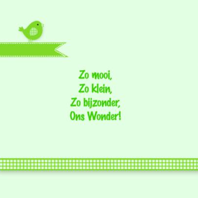 Groen geboortekaartje vogeltje 2