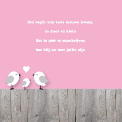 Happy Birds Tweeling Meisjes 2