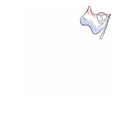Hoera geslaagd vlag 3