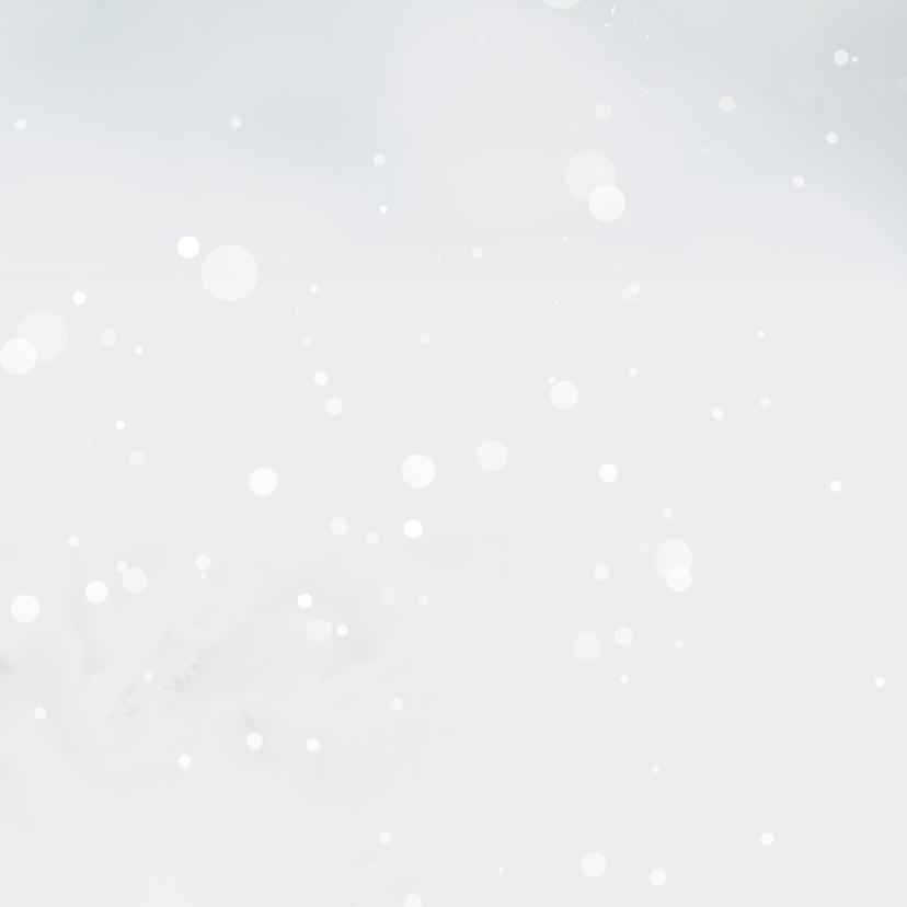 Hout met roodborst en sneeuw 3