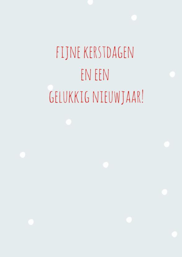 Hulst met sneeuw 3