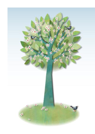 Huwelijk-Cherry-Blossom-Tree 2