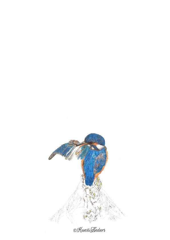IJsvogeltje op stronk 2