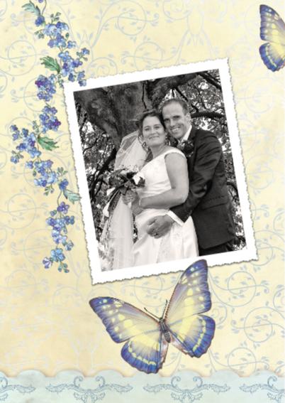 Jubileum Scrapbook 12,5 vlinders - SG 2