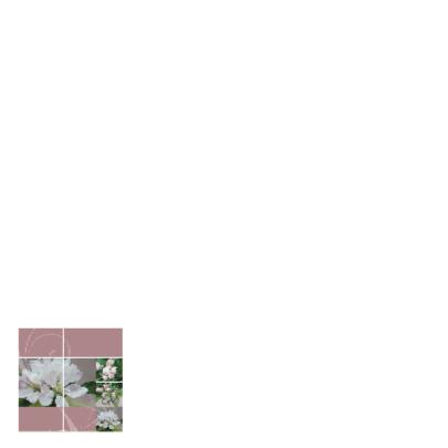 Jubileumkaart openen bloesem 2