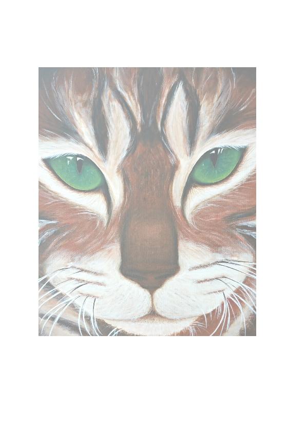 Kat met de groene ogen 2