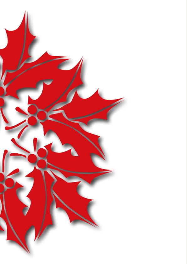 Kerstkaart en Nieuwjaarskaart rood groen 2019 2