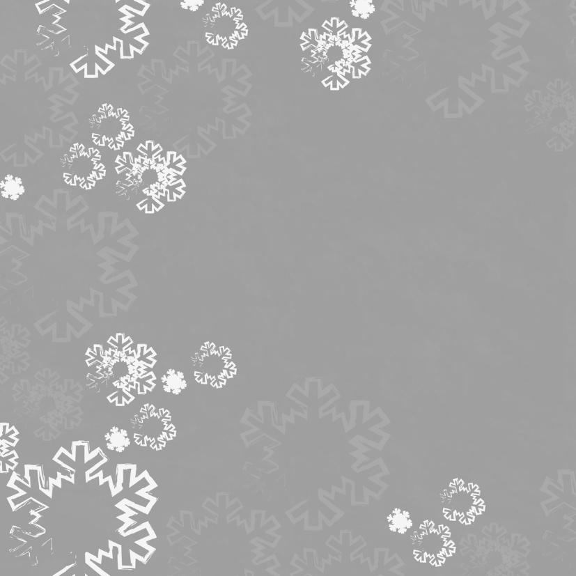 Kerst foto paal grijs sneeuwV-HB 2