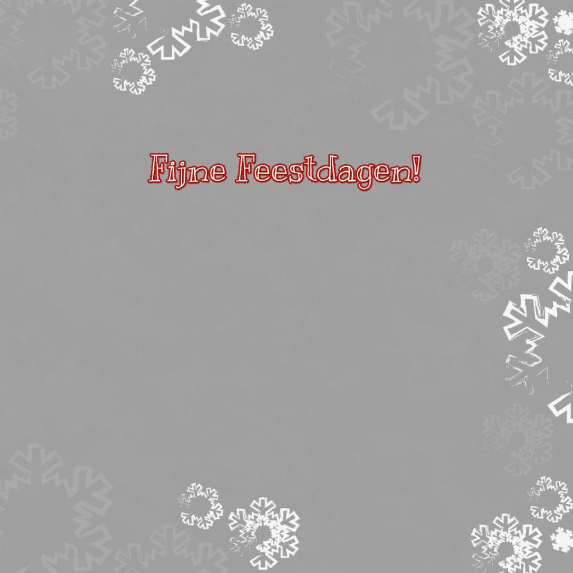 Kerst foto paal grijs sneeuwV-HB 3