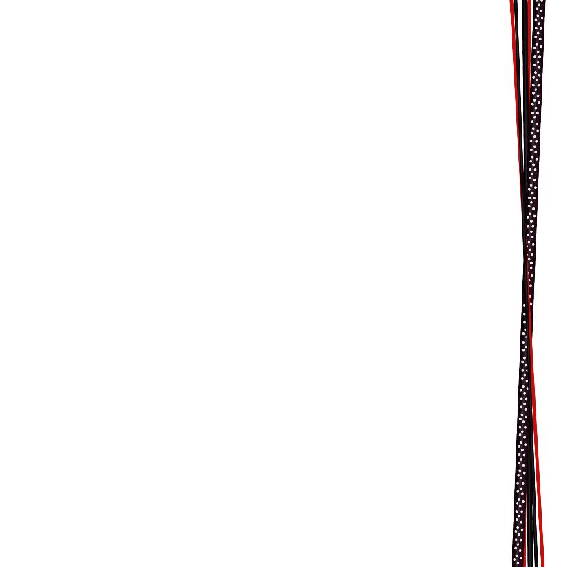 Kerst foto zwart rood lint V-HB 3