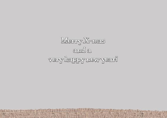 Kerst Grijze Sterren Bordjes 3