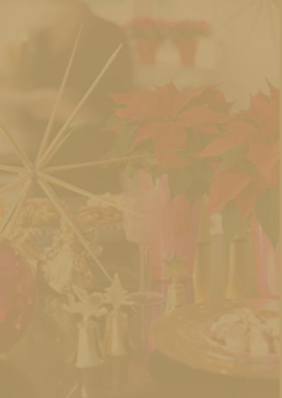 Kerstdiner Kerstster Rood 2