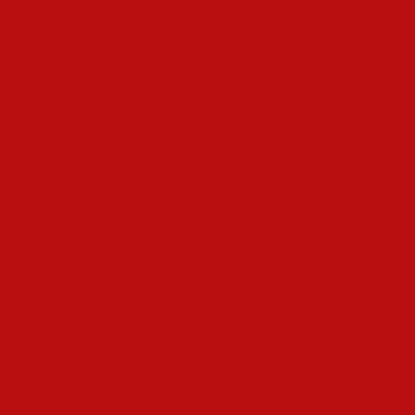 Kerstkaart-duifjes-tak-PF 2