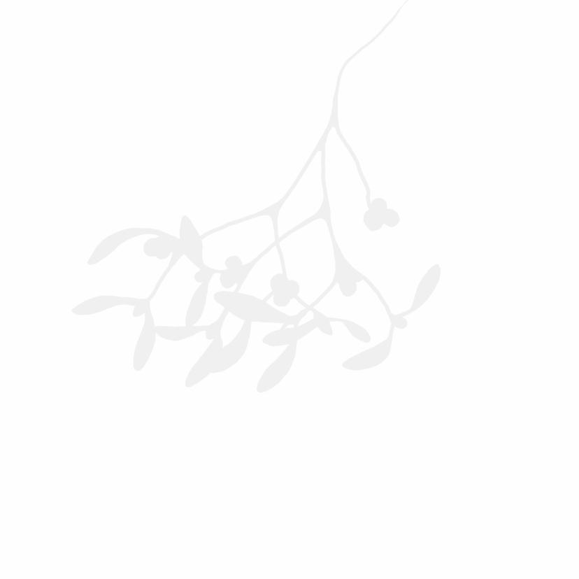 Kerstkaart mistletoe kusjes-IP 3