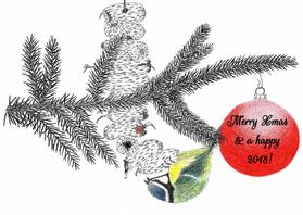 Kerstkaarten - Kerstkaart pimpelmeesje