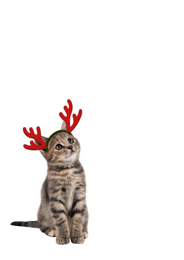 Kerstkaart poesje met maretak 2