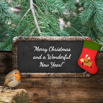 Kerstkaarten - Kerstkaart roodborstje en bord