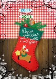 Kerstkaarten - Kerstkaart roodborstje in sok RB