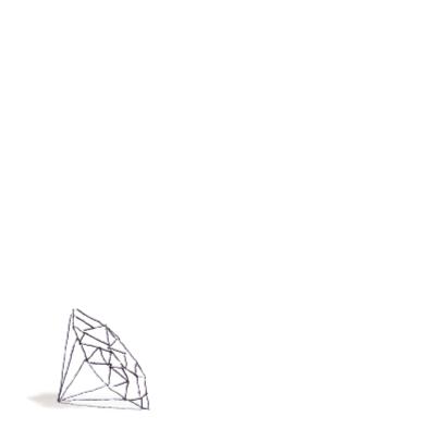 Kerstkaart Zebra Diamant 2