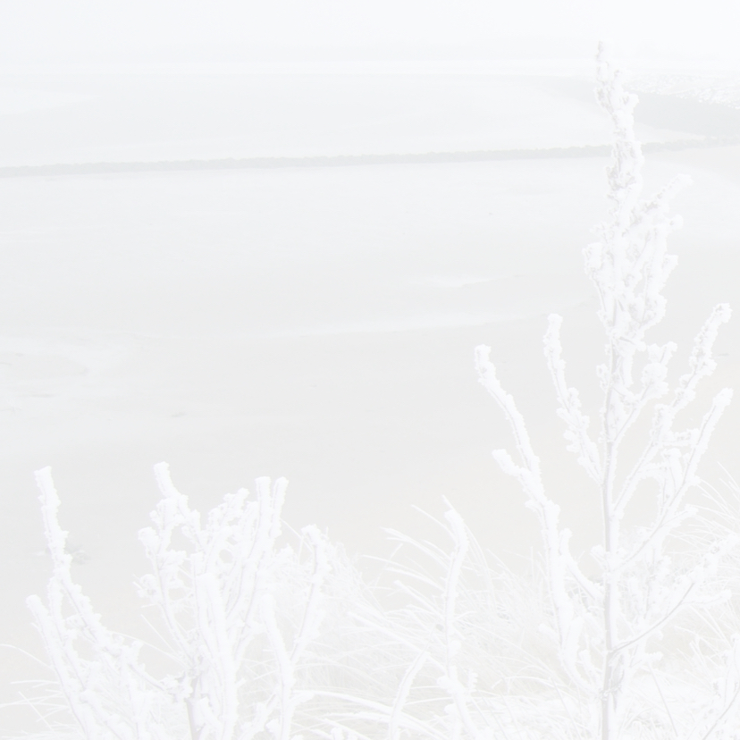 Kerstkaart Zeeuws meisje bootjes 2