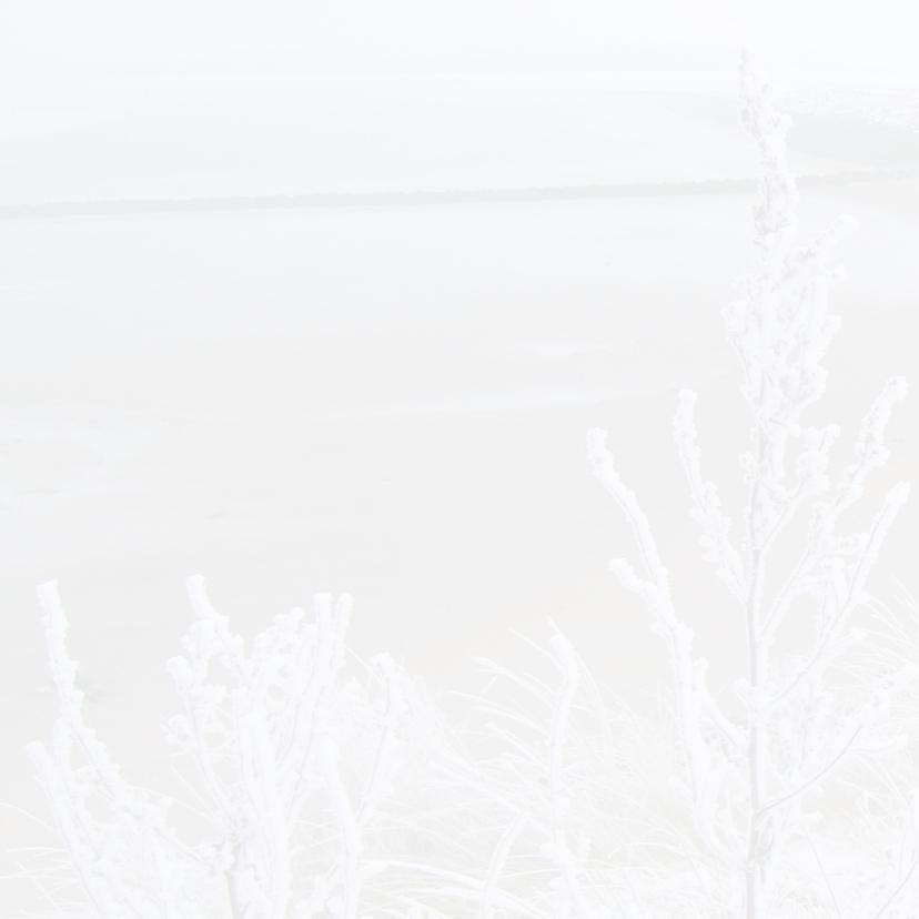 kerstkaart Zeeuws meisje sneeuw 2