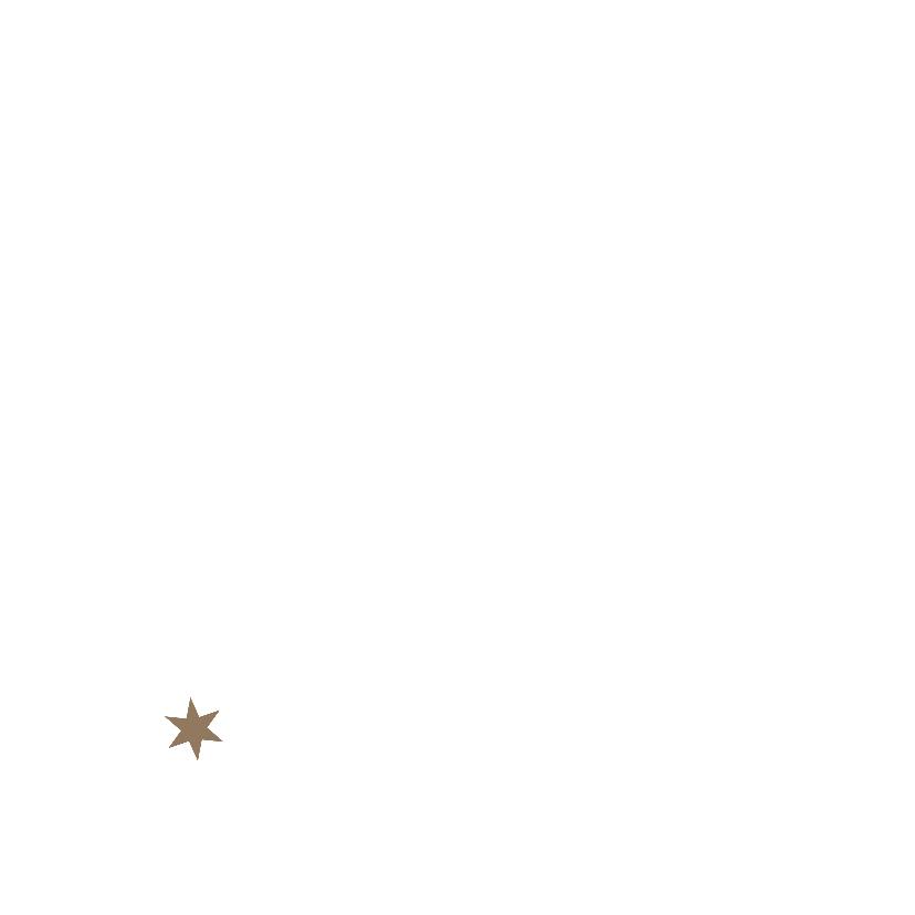 Kerstkaarten Krakeelster Y 2