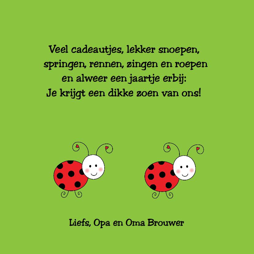 Kinderkaart Lieveheersbeestje groen 3