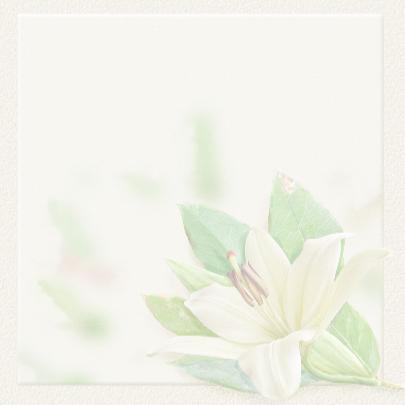 Klassieke condoleancekaart met lelie op gewassen achtergrond 3