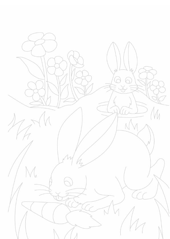 kleurplaatkaart konijn- MT 3