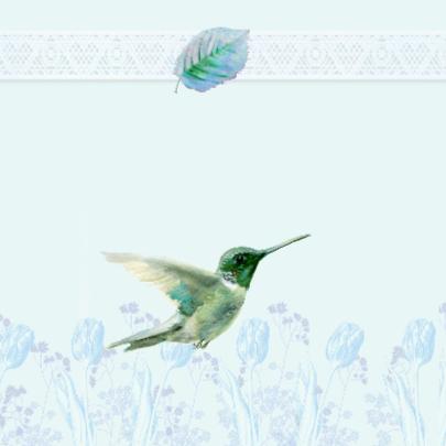 Kolibrie geboorte felicitatie 2